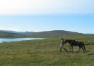 På vei ned mot Ruvdnajávri. Herfra er det ikke langt til Guolasjávri i Kåfjord kommune. Foto: Evald Bjerkli