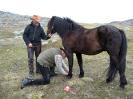 Markaprinsen er med på sin første fjelltur. Geirmund sørger for skoinga som må til. Foto: Berit Alette Mienna