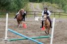 hester og aktiviteter 2012_5