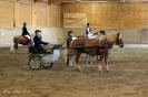Hester og aktiviteter 2012